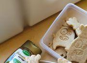 Číst dál: Čekankové sušenky pro děti