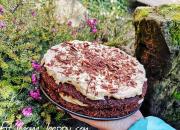 Číst dál: Čokoládový dort s ořechovým krémem