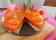 Číst dál: Meruňkový nepečený dort